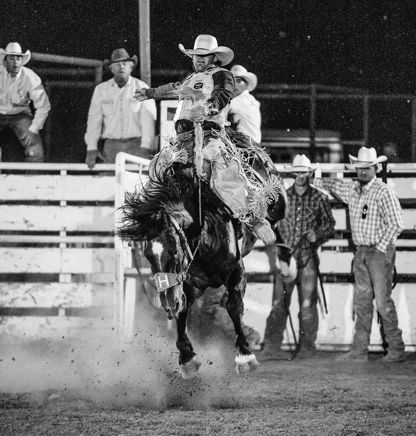 Whisky Bent Roughstock Futurity - Hard bucking horses and rank bulls!