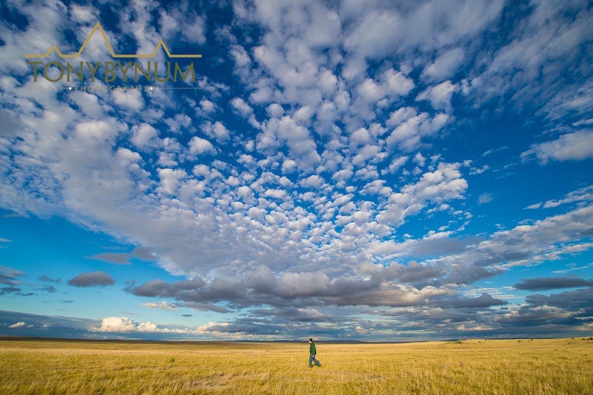 A lone hiker on the prairie, Eastern Montana near Ekalaka. Shot on assignment for the Montana Wilderness Association.