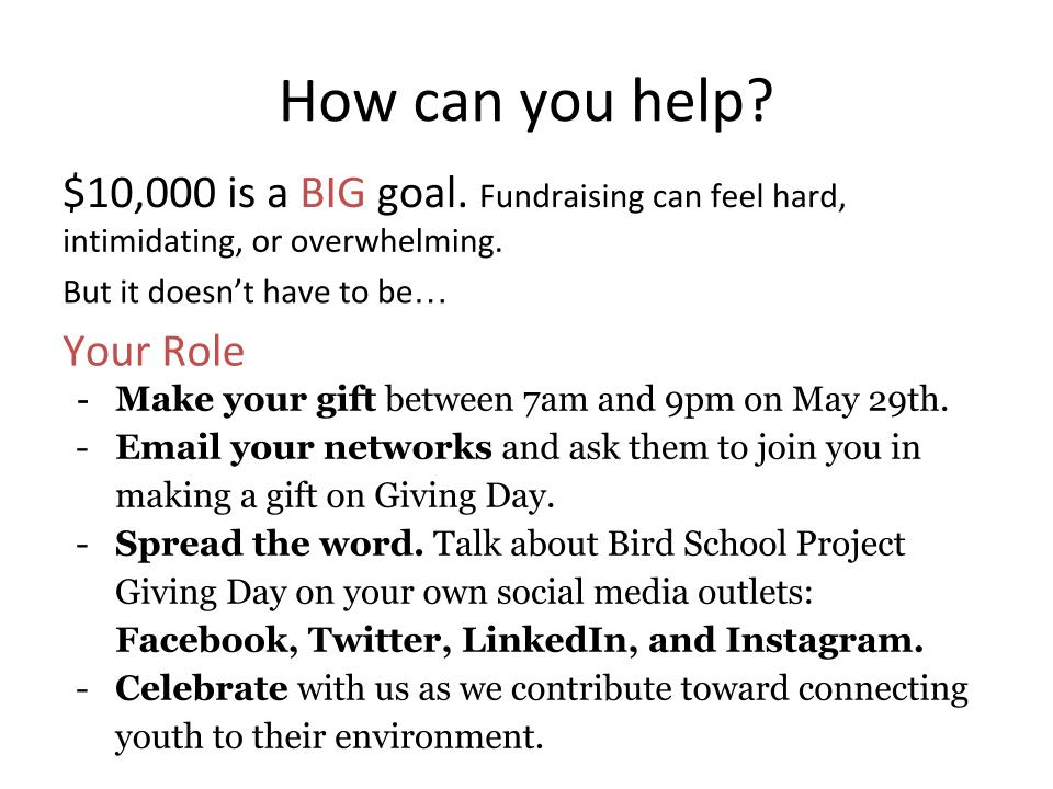 Giving day fundraising guide (2).jpg