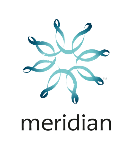 Meridian_Energy_Client.png