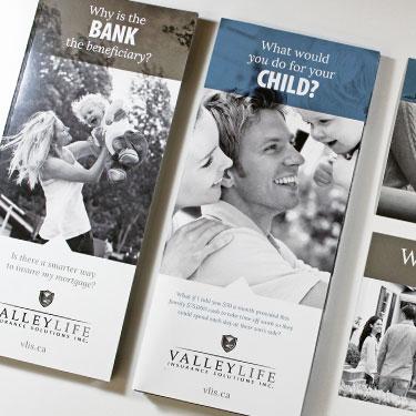 VLIS_brochures_design_printing_identity_graphics.jpg