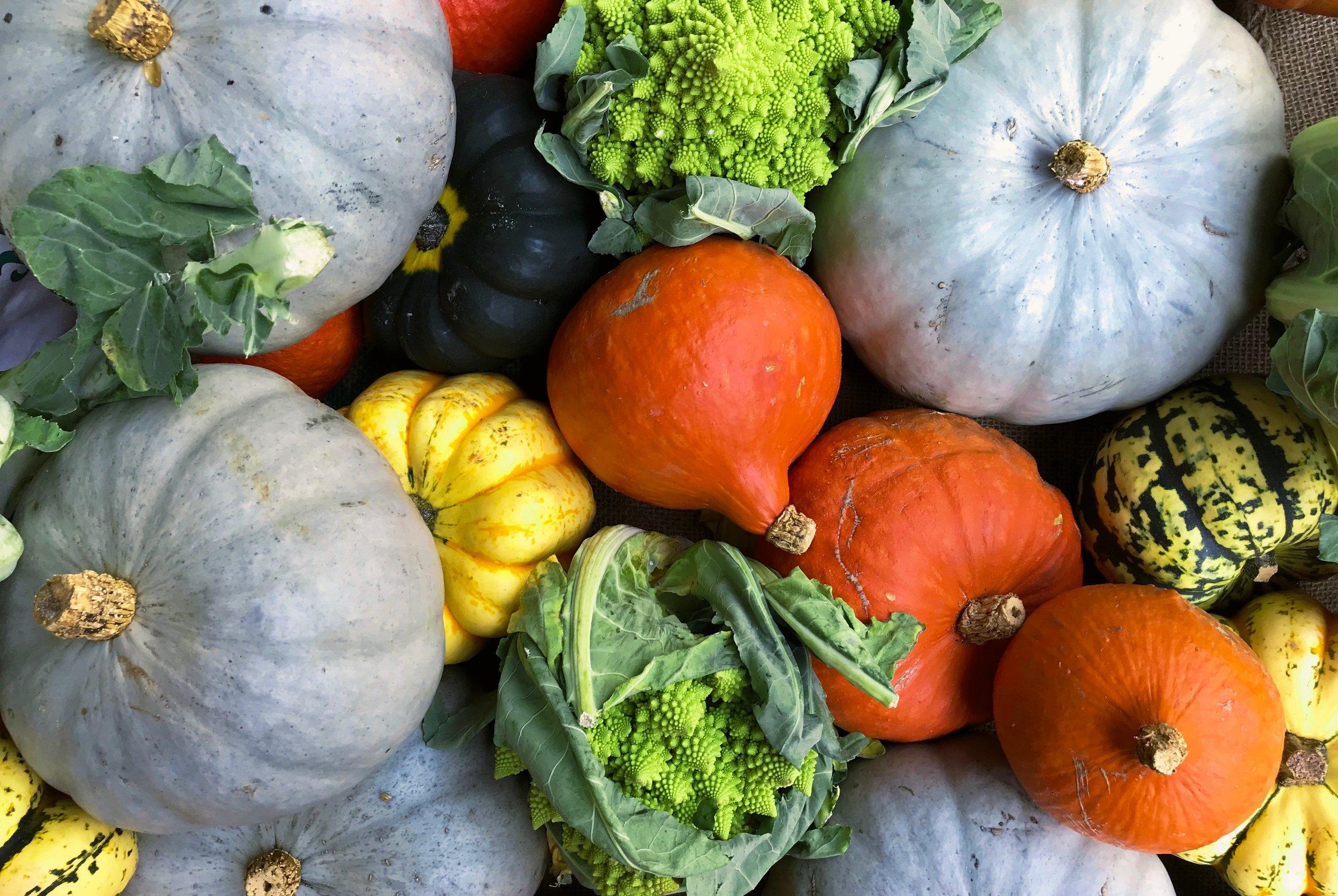 family-friendly-autumn-recipes