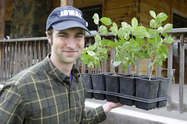 Andrew Pittz of Sawmill Holllow Farm carries aronia berry seedlings.       Nati Harnik/AP