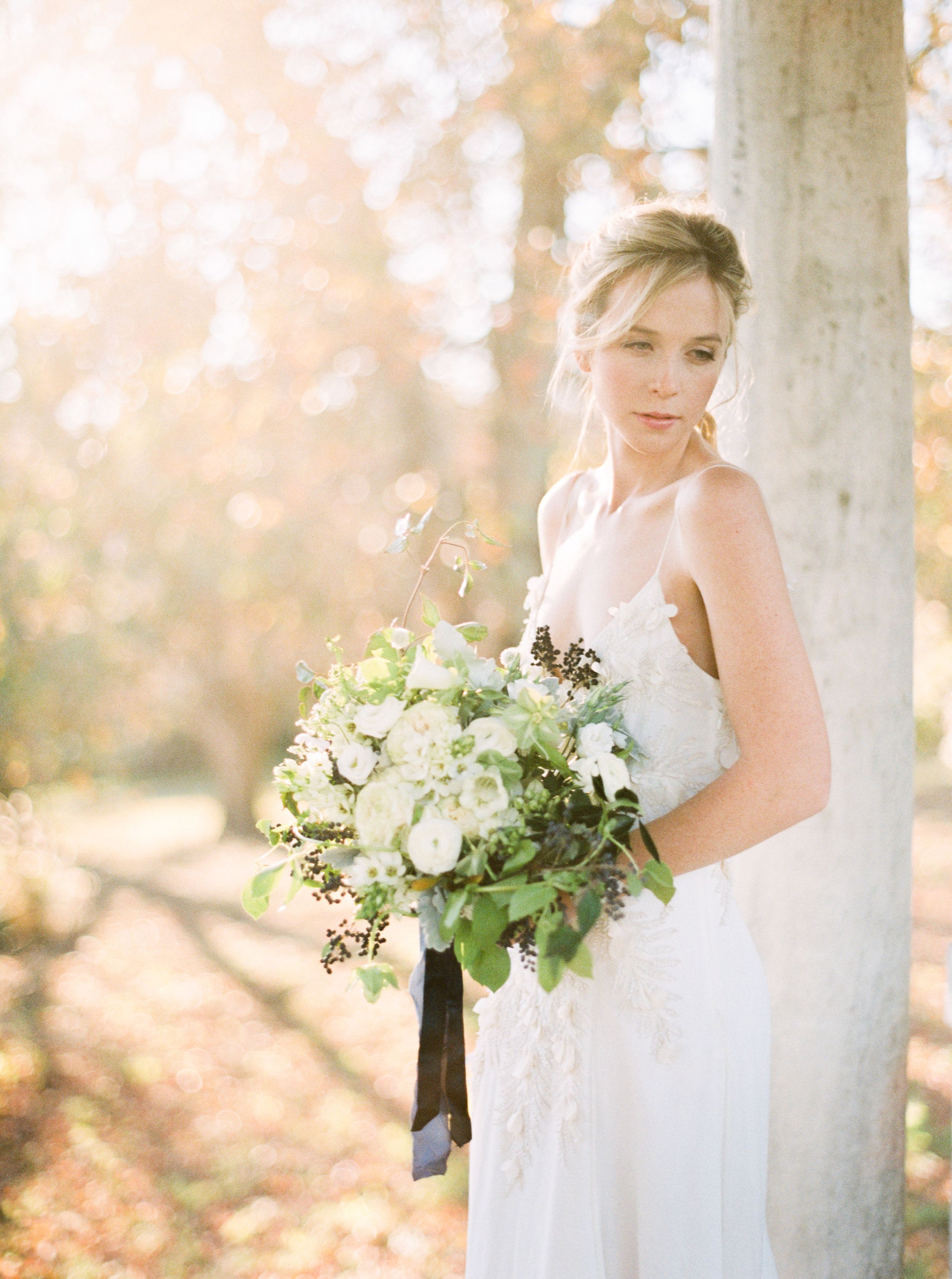 Ethereal Bridal Editorial. Natural Hair and Makeup By: Emily Artistry
