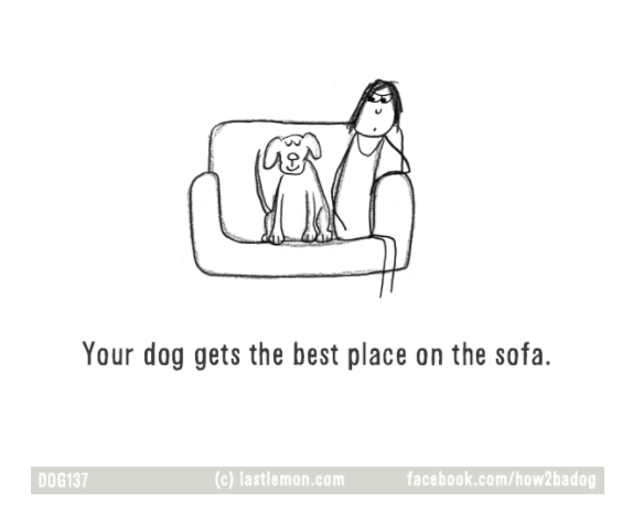 ilustraciones-loco-por-tu-perro-crazy-dog-parent 9.jpg