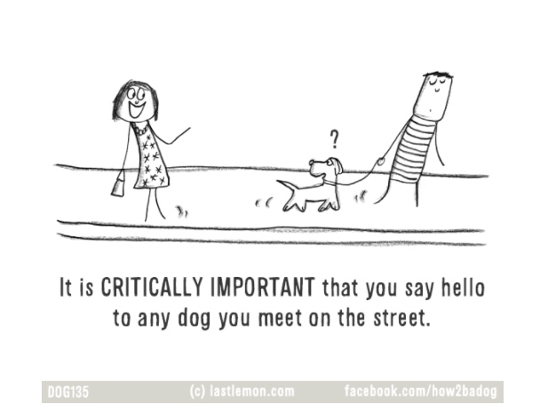 ilustraciones-loco-por-tu-perro-crazy-dog-parent 7.jpg