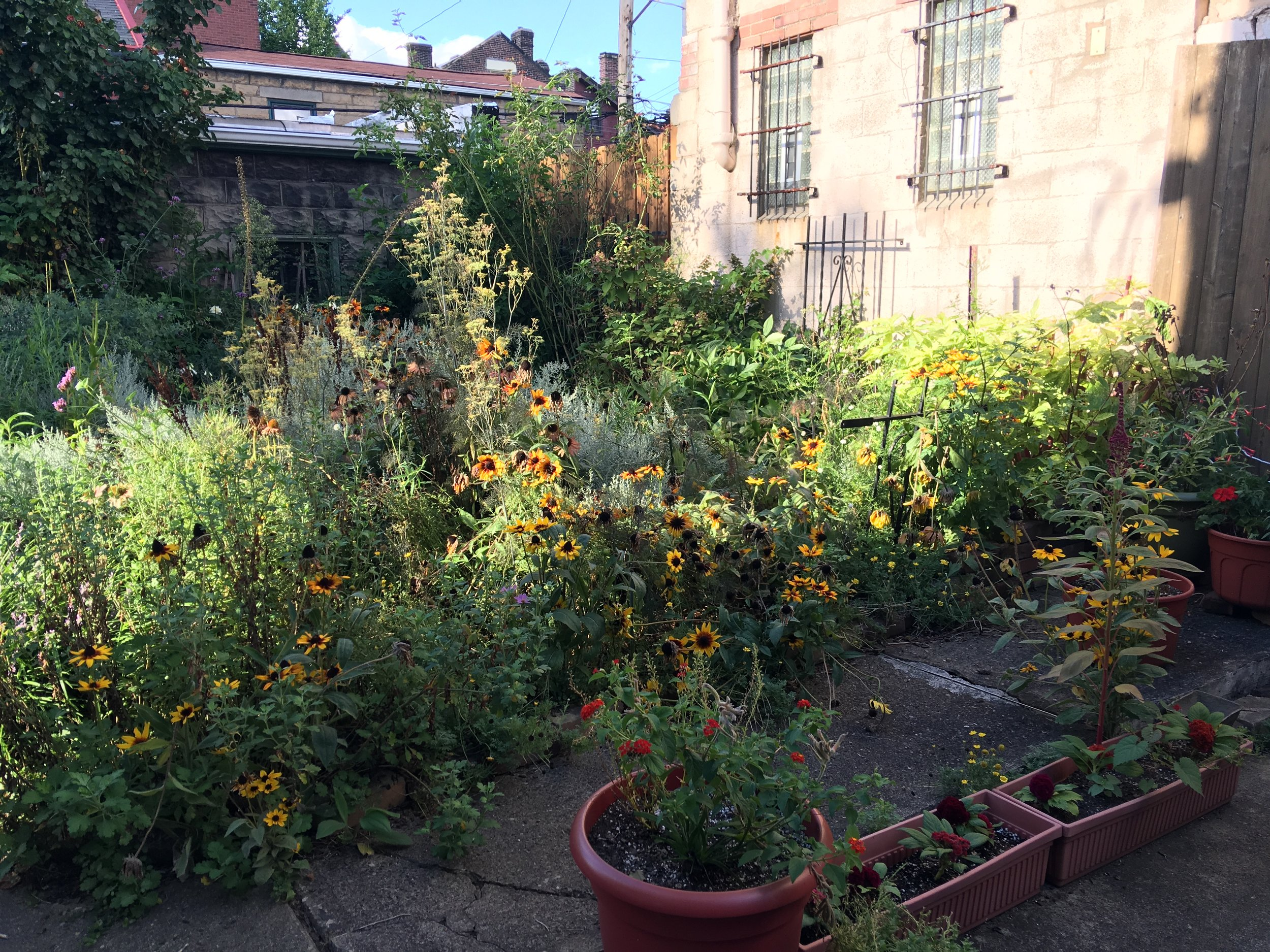 Bloom Brigade Garden