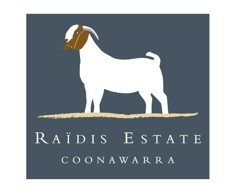 raidis_logo.jpg