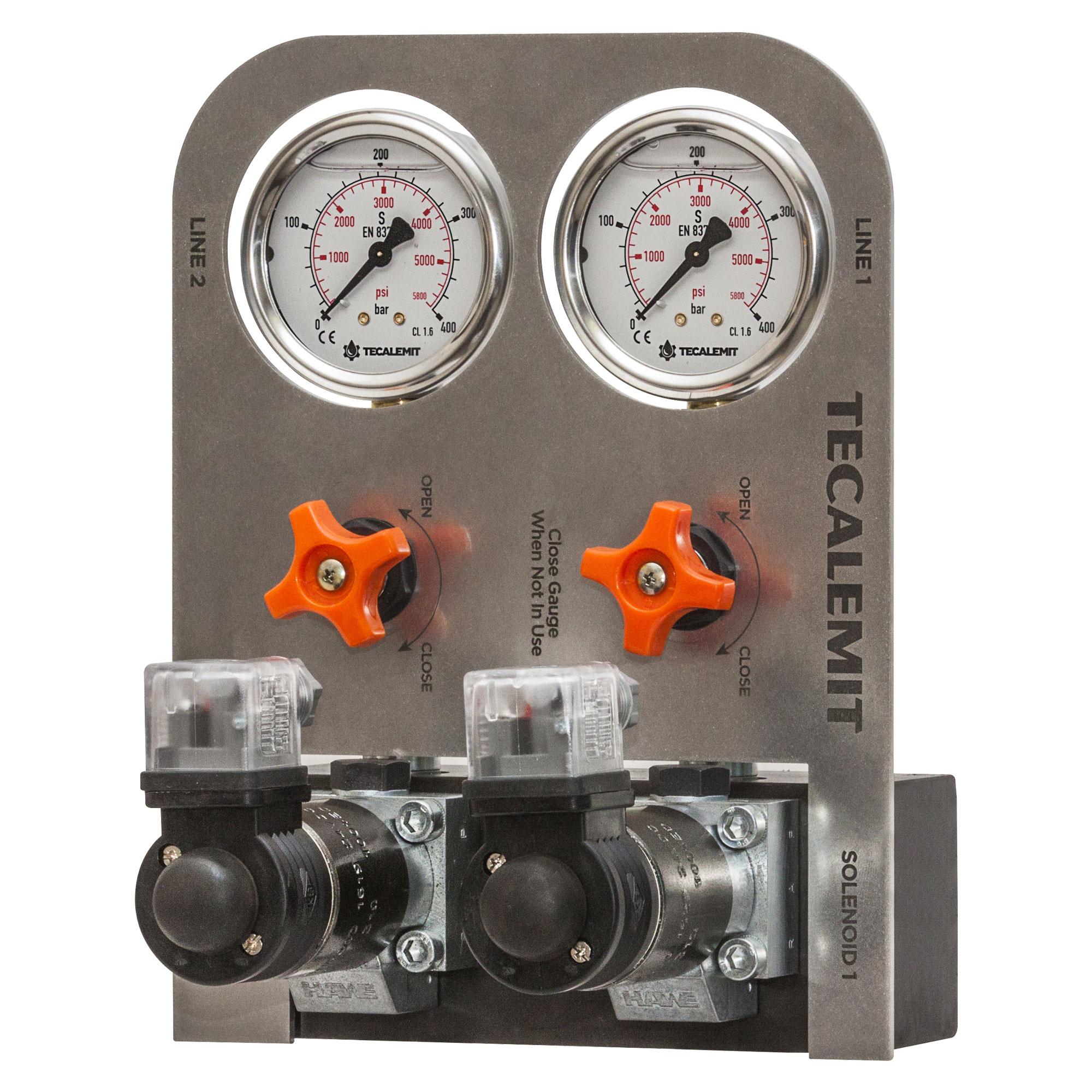 ERVA.24VDC - Electric Dual Line Grease Reversing Valve Assembly