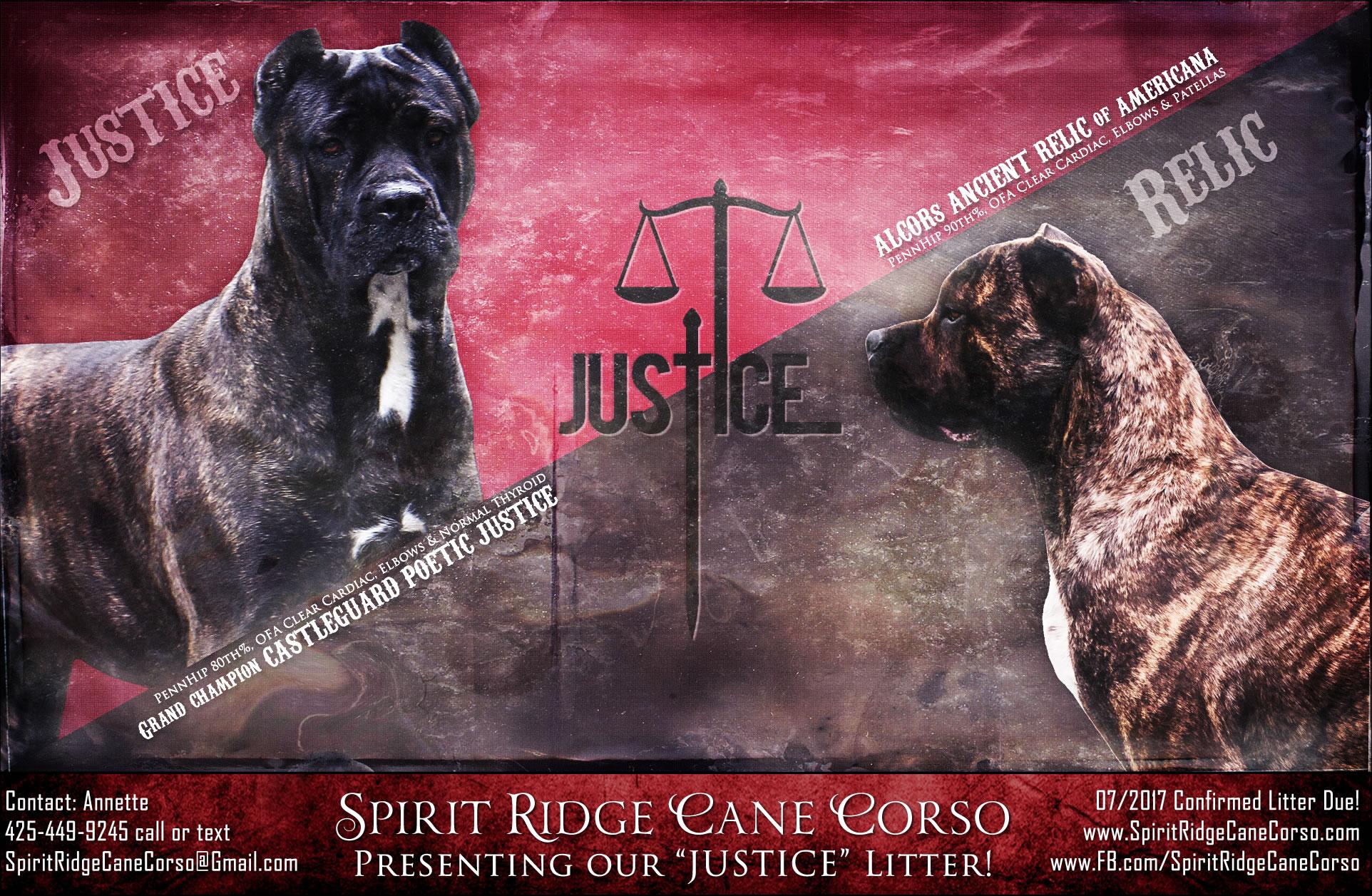 Spirit Ridge Cane Corso