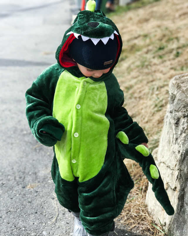 Keeping warm is important. This cute Dinosaur costume did the job well.
