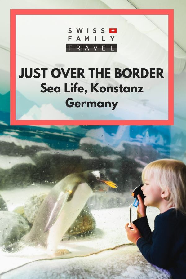Visit Sea Life in Konstanz, just over the German-Swiss border