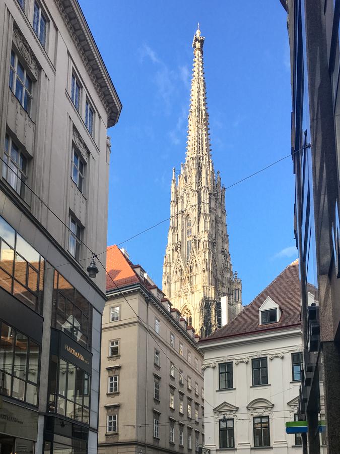 SFT-Wien-3.jpg