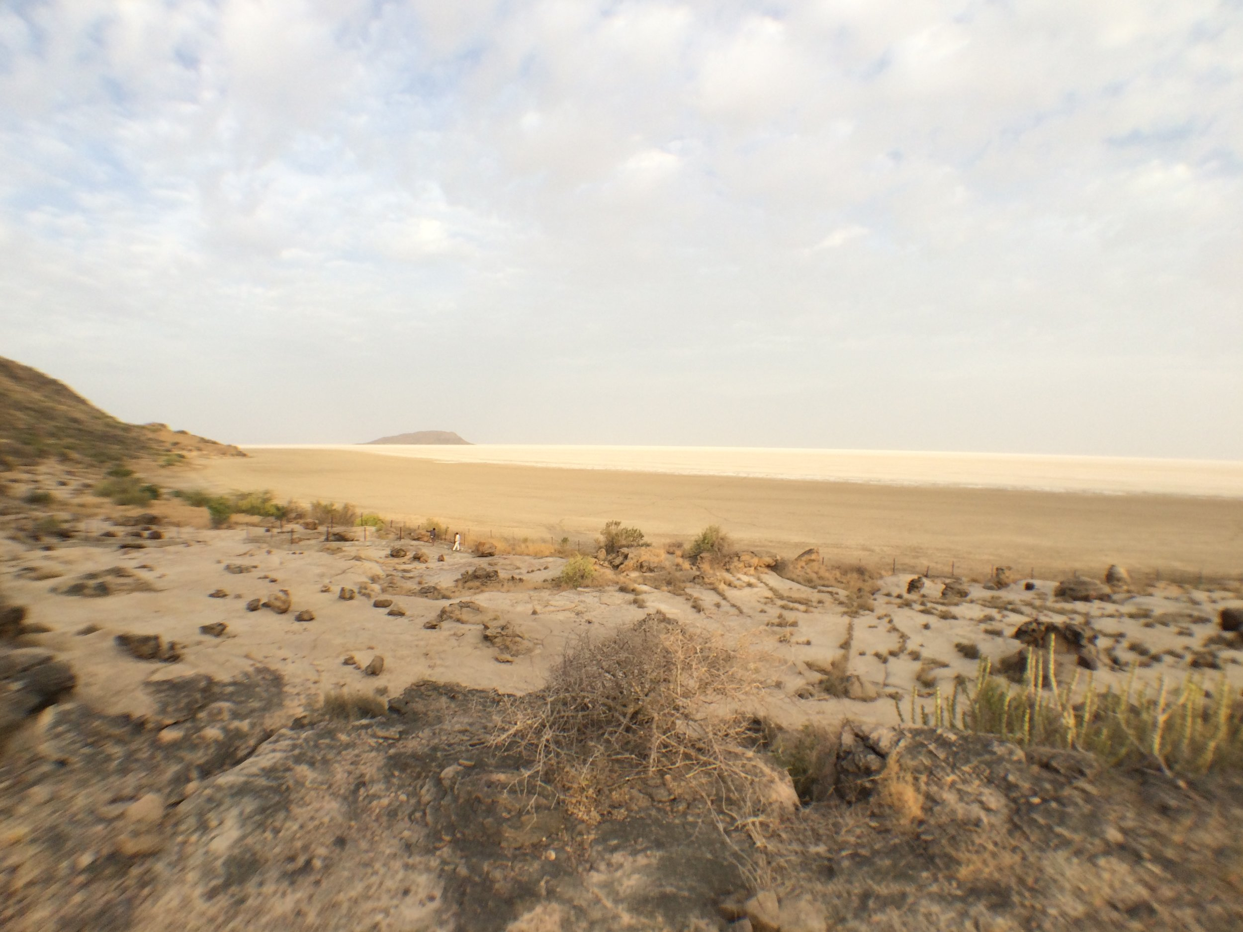 View over the Great Rann from Khadir island.