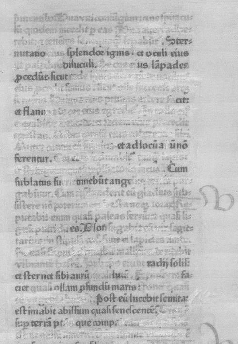The text to Radii solis, et sternet (sibi aurum) quasi lutum.