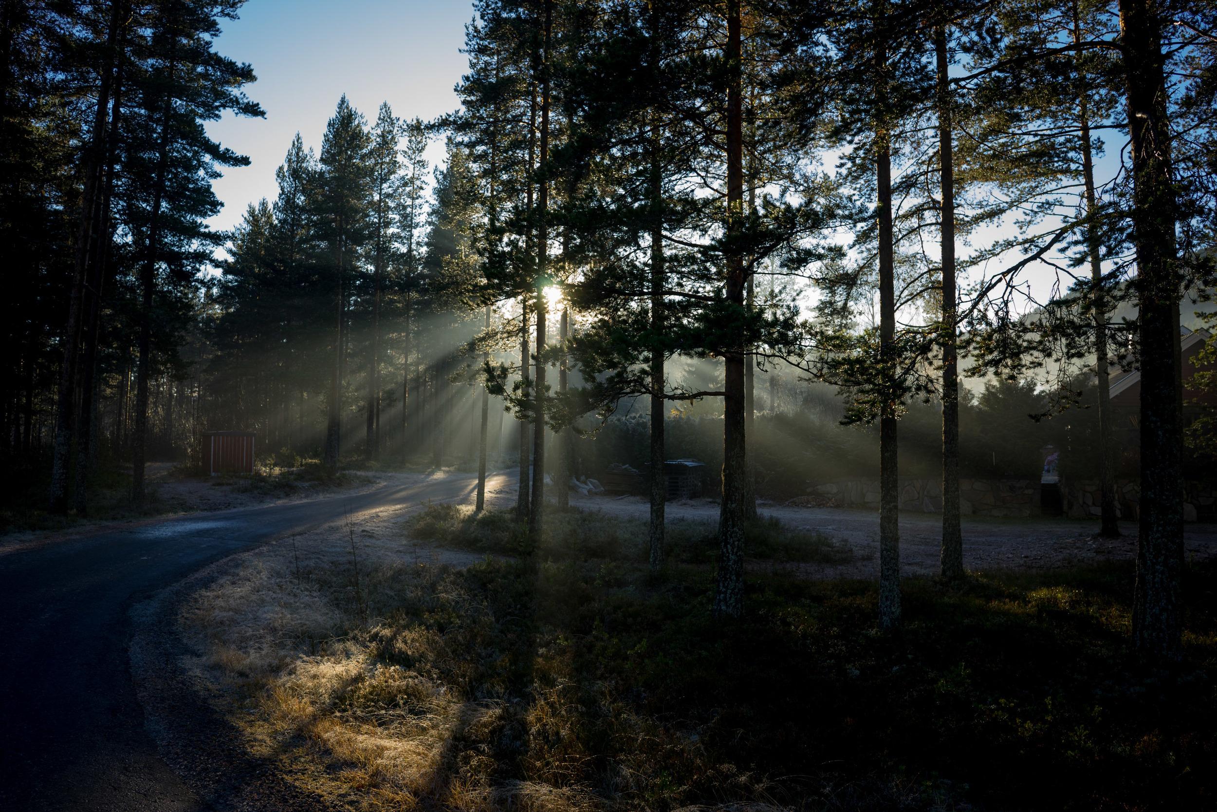 Jos - Weekend Noorwegen November 2015-00659.jpg