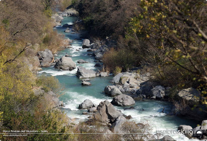 Parco-fluviale-dellAlcantara---Sicilia.jpg