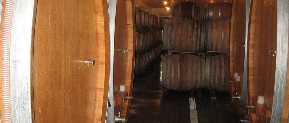 vini-wine-etna-barricaia.jpg