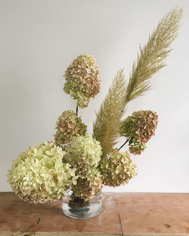 #stilllifeflowers #hydrangea #pampasgrass #britishflowers