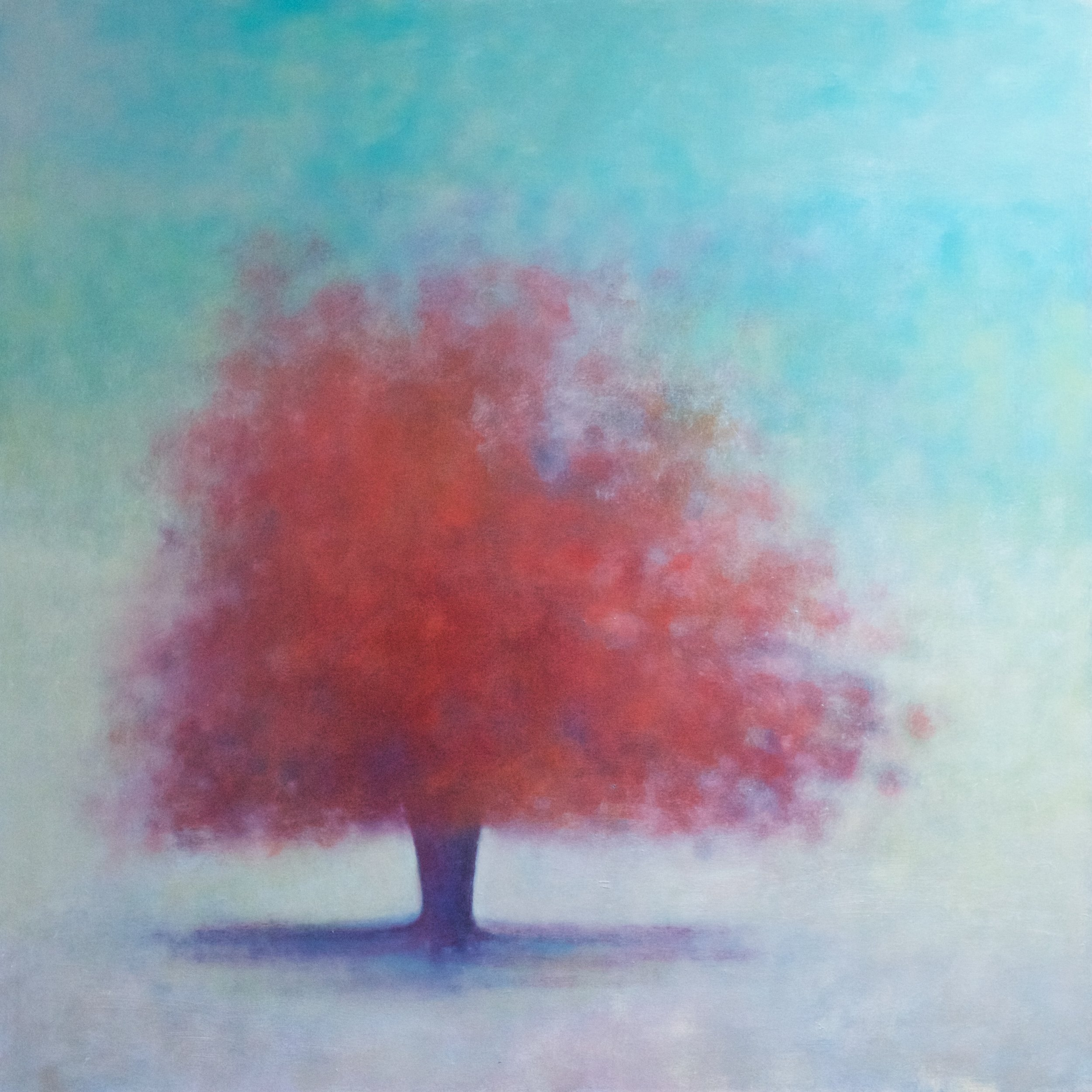 Title: Illumine  Size: 92 x 92 cm  Medium: Oil on canvas  Price: SOLD