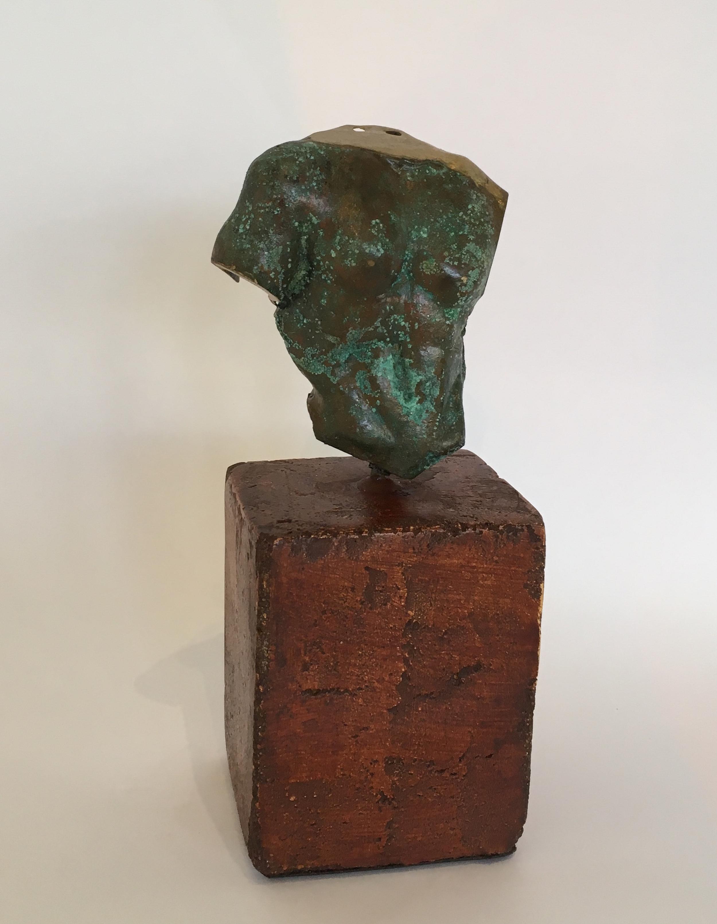 Title: Torso III  Size: H 21 cm  Medium: Bronze Edition 1/1  Price: £1500