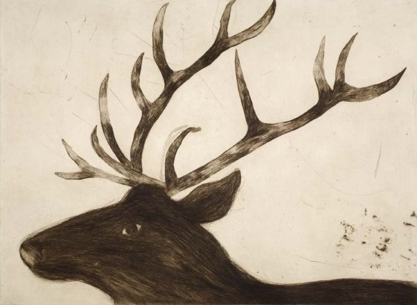 Title: Stag  Size: 71.5 x 96.5 cm  Medium: Drypoint  Price: £1000 unframed   Buy Now