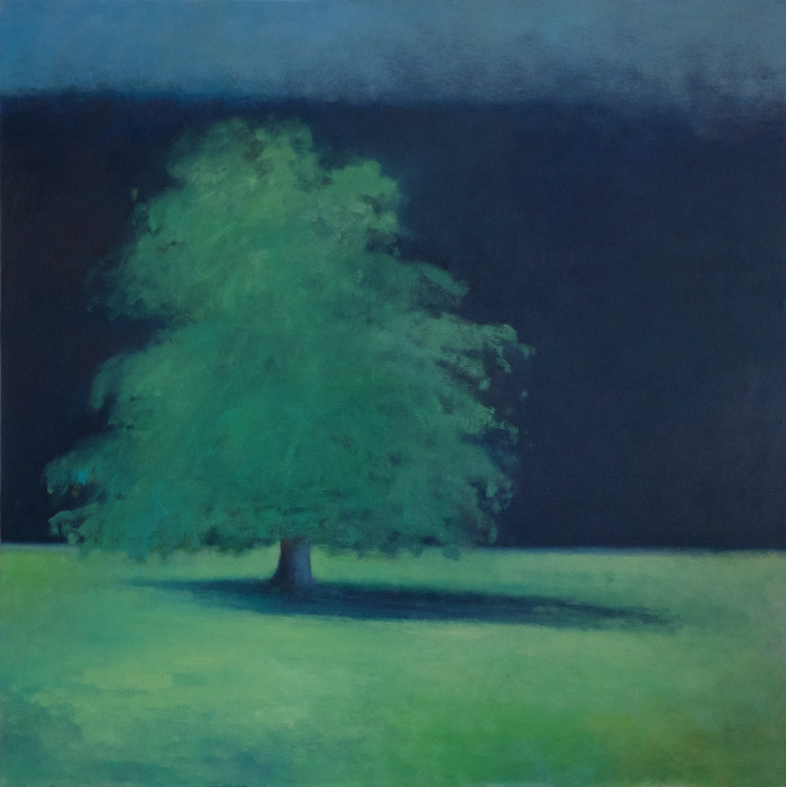 Artist: Claire Beattie  Title: Summer Colour  Size: 102 x 102 cm  Medium: Oil on canvas  Price: £2650