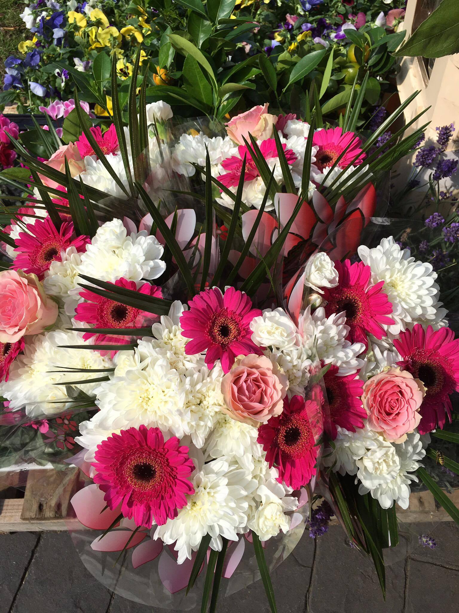 Cut flowers only £2.95 a bunch