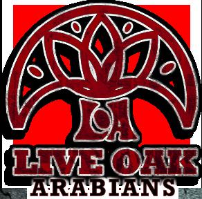 LIVEOAK_logo.png