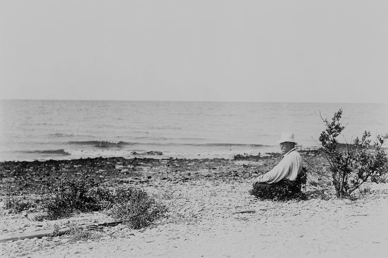 President Roosevelt on Breton Island National Wildlife Refuge in 1915 (100 years prior to Bob's version in 2015)