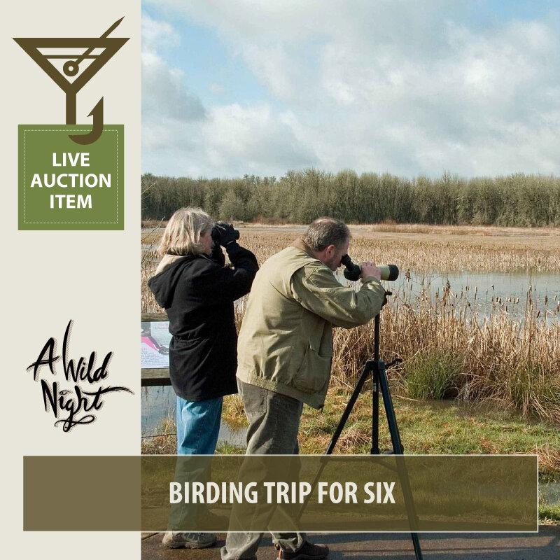 2019_Birding-Trip-for-Six.jpg
