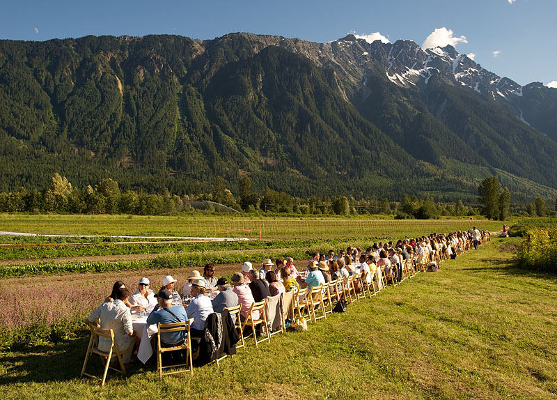 """""""Outstanding in a Field,"""" a traveling dinner group. Photograph by Insight Photography."""