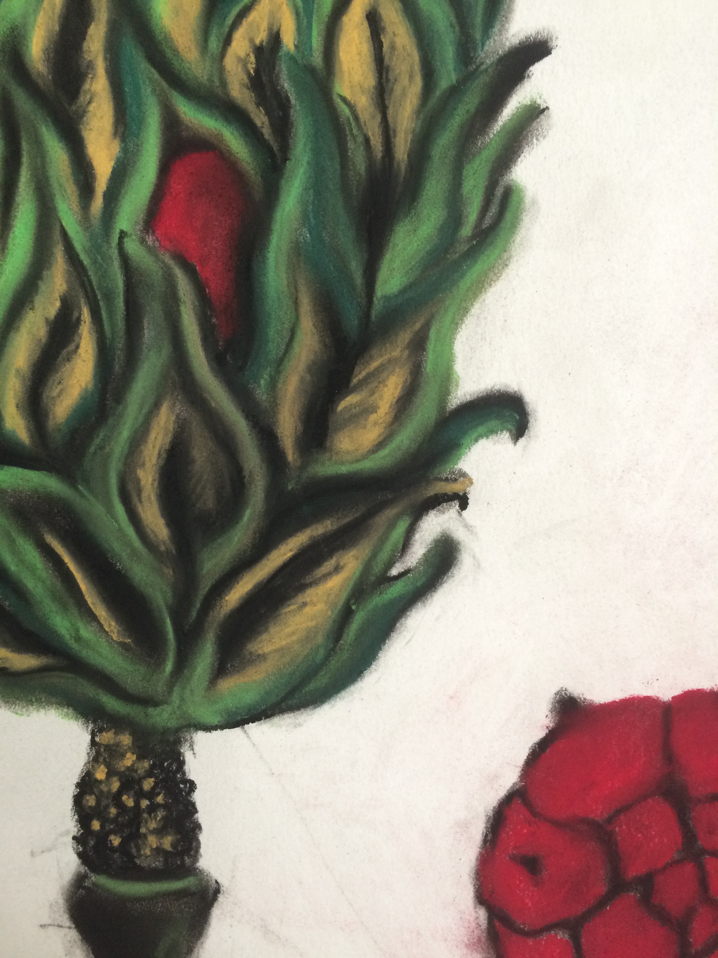 Green Pod Red Pod detail