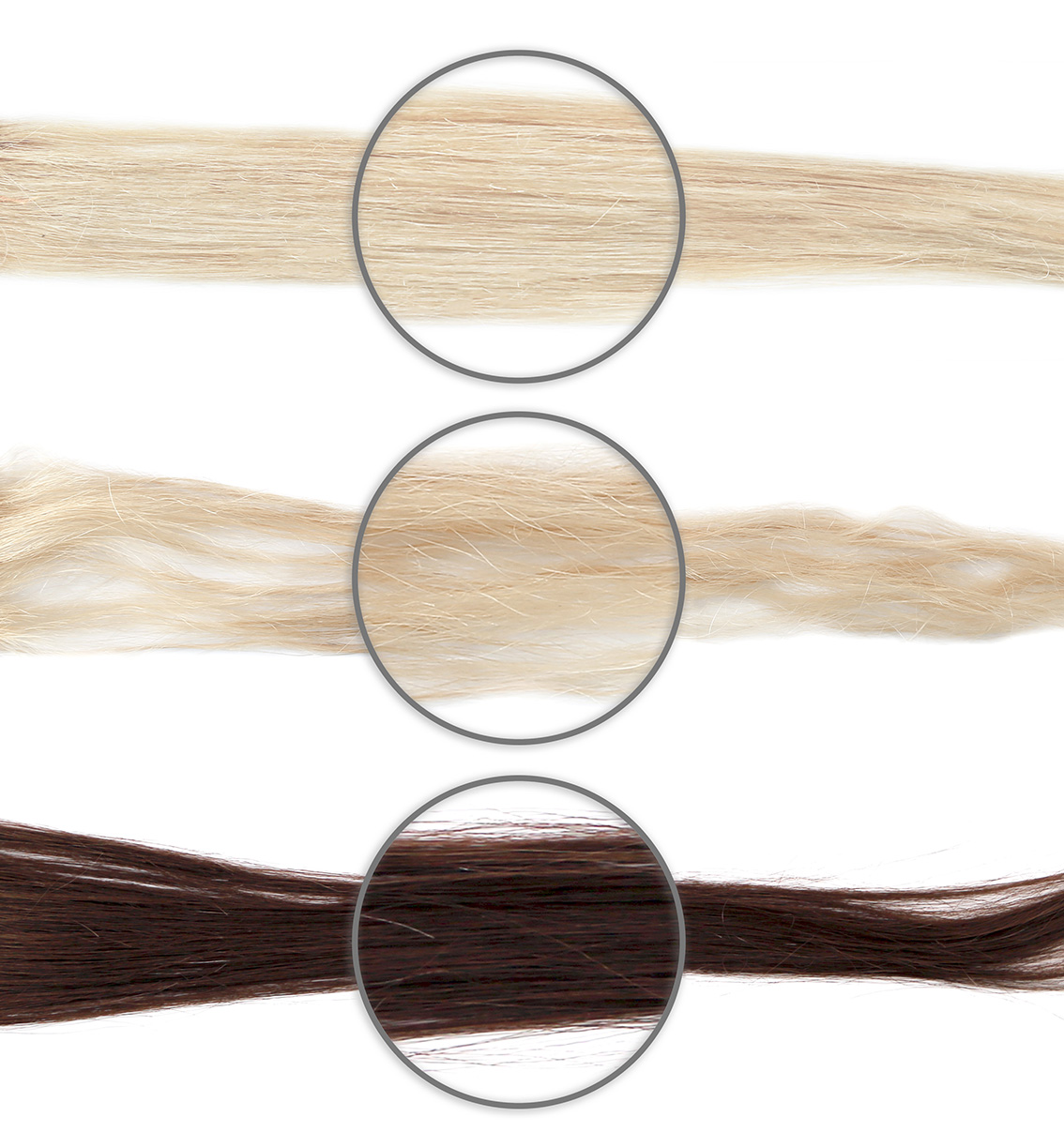 NEWSHA_Colorwatch-color-strands.jpg