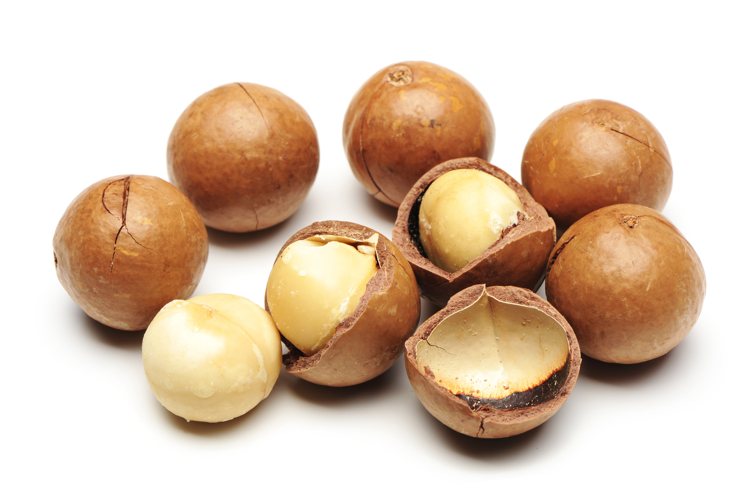 Newsha_Macadamia Nuts copy 2.jpg