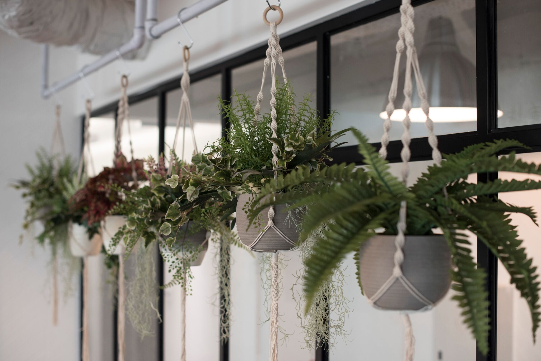 Hanging macrame planters are used as part of decorative aesthetic, creating a new balance to the composition of space.