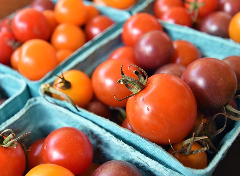 farm-marketing-photography-05b.jpg