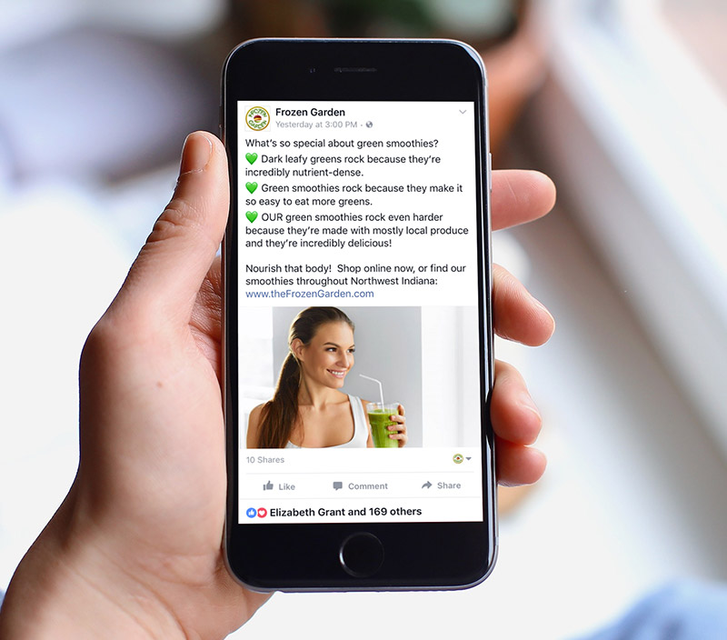 Food Startup Social Media Advertising - Frozen GardenWe managed Facebook and Instagram advertising for Frozen Garden until they grew large enough to hire their own marketing director on staff.