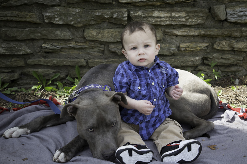 03-lake-como-saint-paul-minnesota-spring-one-year-old-baby-session-dog-melanie-mahonen-photography