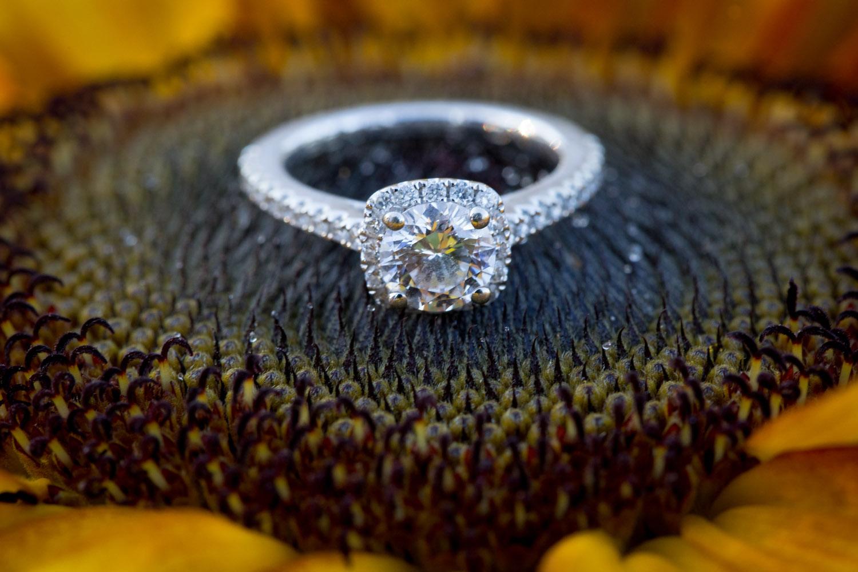 07-minneapolis-mn-wedding-photographer-rose-garden-sunflower-macro-ring-detail-summer-engagement-photos-mahonen-photography.jpg