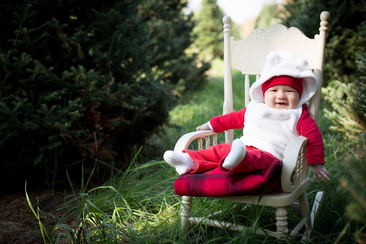 01-hansen-tree-farm-christmas-mini-sessions-minnesota-family-photographer-red-baby-outfit-warm-festive-mahonen-photography.jpg