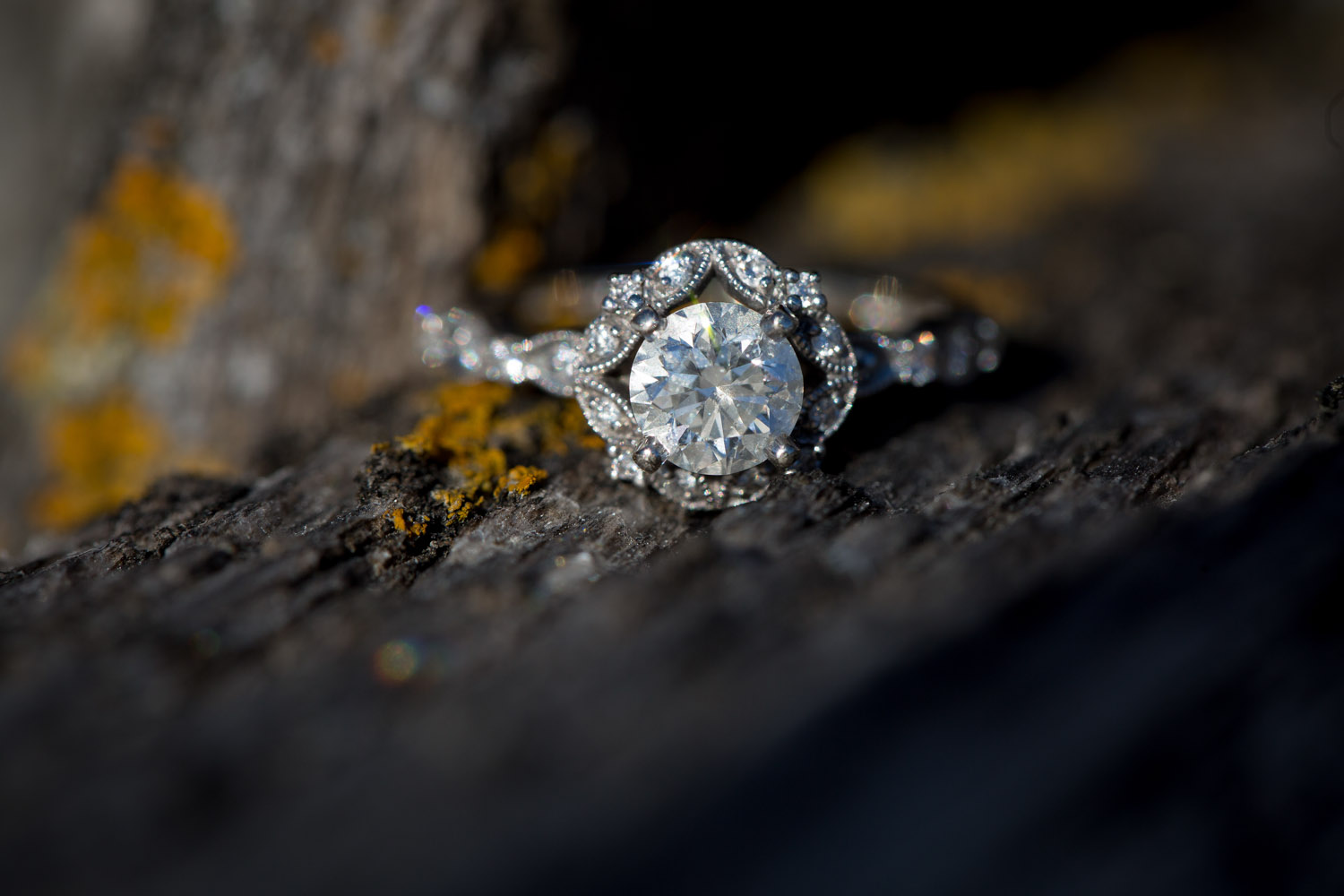 06-minnesota-winter-mn-engagement-ring-detail-photographer-theodore-wirth-park-mahonen-photography.jpg