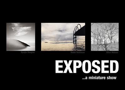 Kim Weston - Exposed Gallery - Miniature Show - Carmel CA