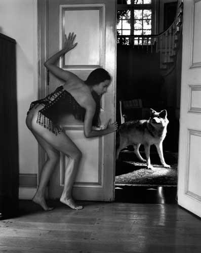 kim-weston-hiding-wolf.jpg