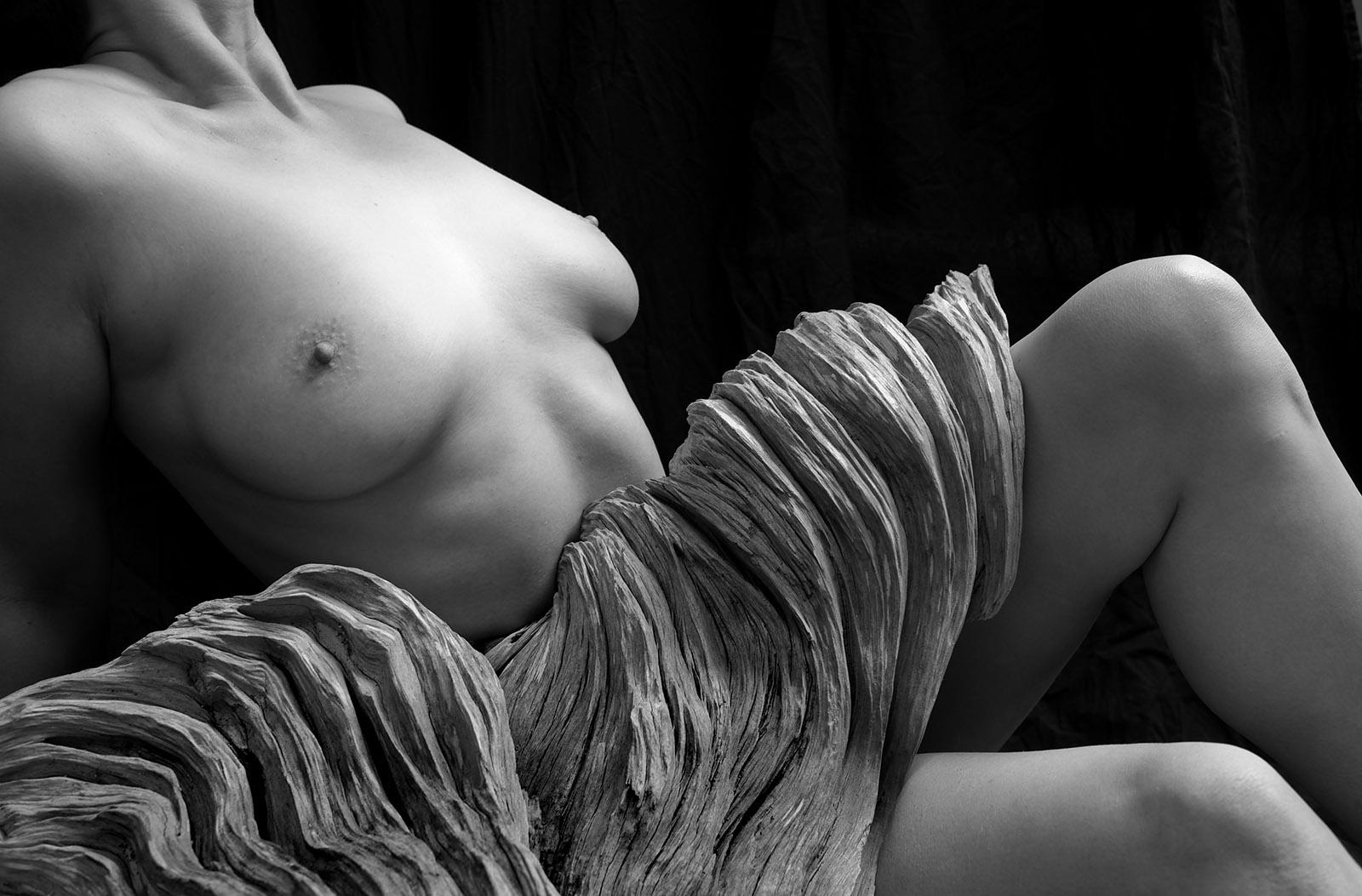 Photo by Frank Baudino