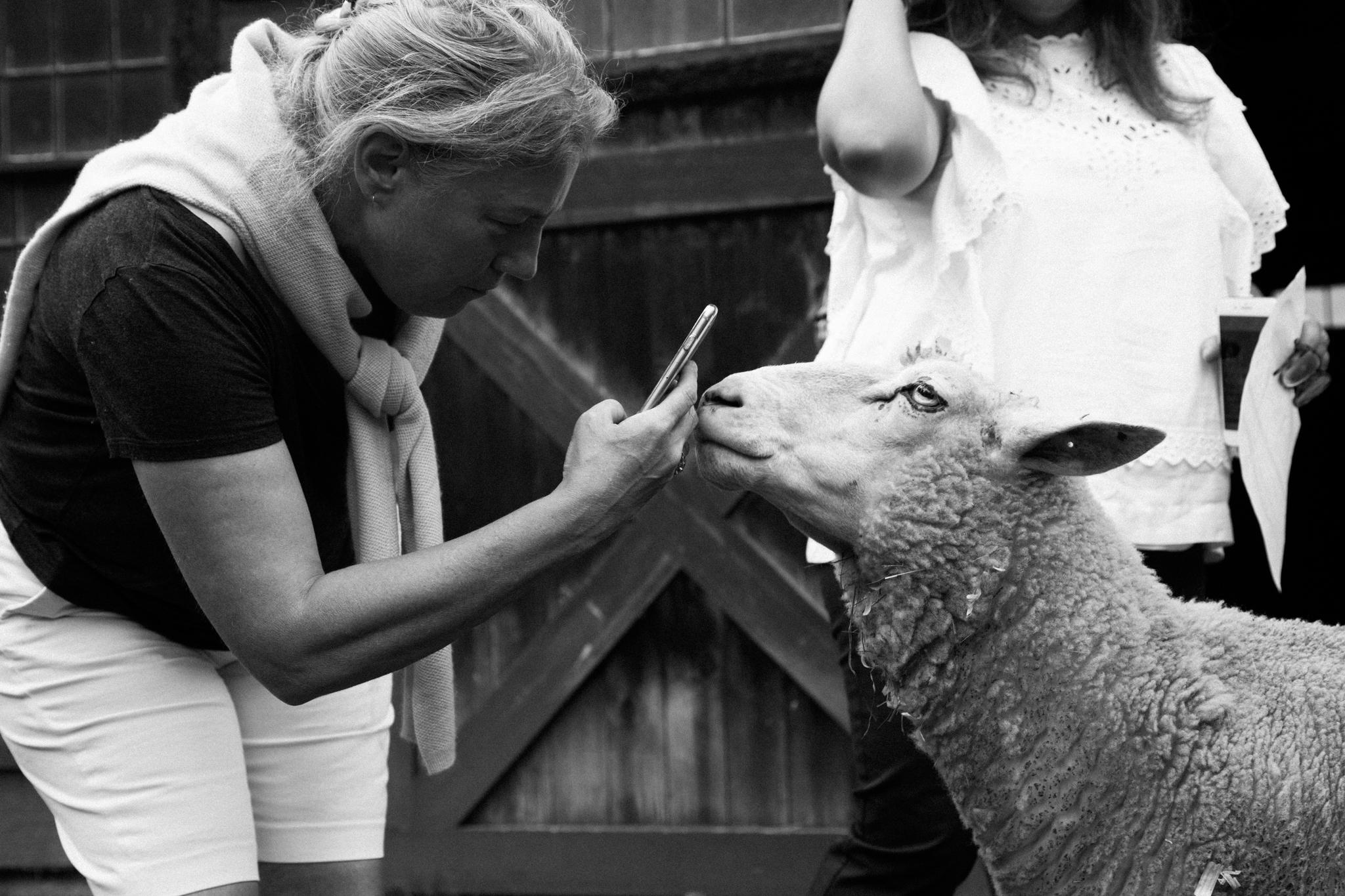 Holz-Weston-Nude-Workshop-2017-22-by-Annabelle-Scott.jpg