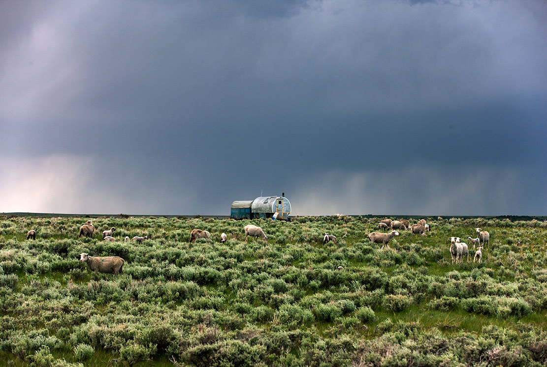 Sheep-Wagon-Wyoming.jpg