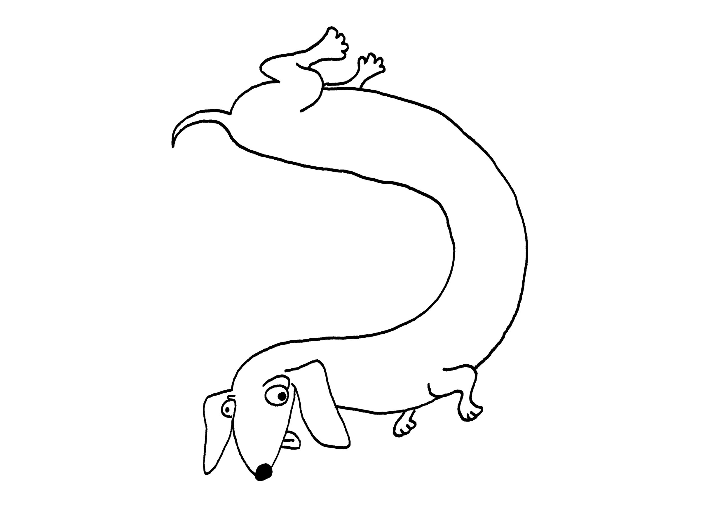 Doxie -