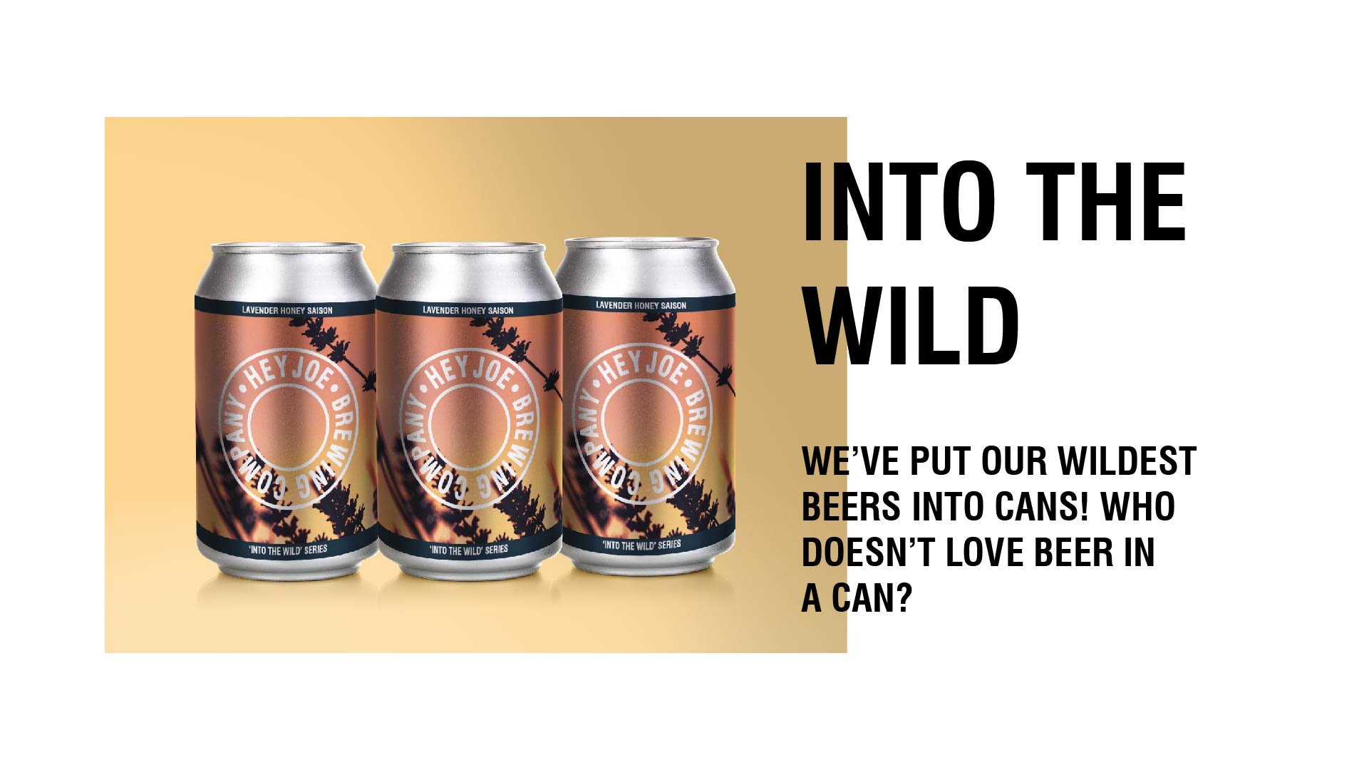 Into the Wild Beer Pack shot