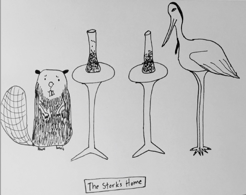 The Stork's Home
